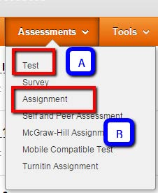 Assessments Tab menu