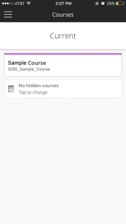 Screenshot of Blackboard Instructor Course List that shows the courses you are enrolled in as the instructor.