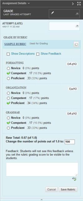 Grade by Rubric Screenshot example