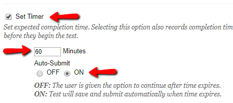Screenshot of Set Timer options, with 60 minutes and Auto-Submit toggled to ON